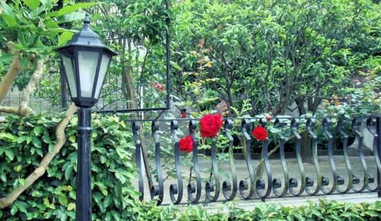 appartamento ischia con giardino privato