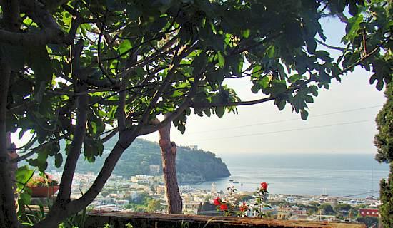 ischia vacanze relax terme e benessere